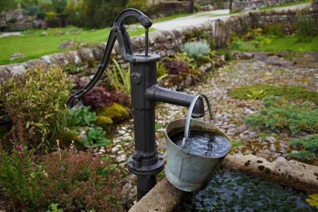 Jak dbać o ogród wiosną i latem?